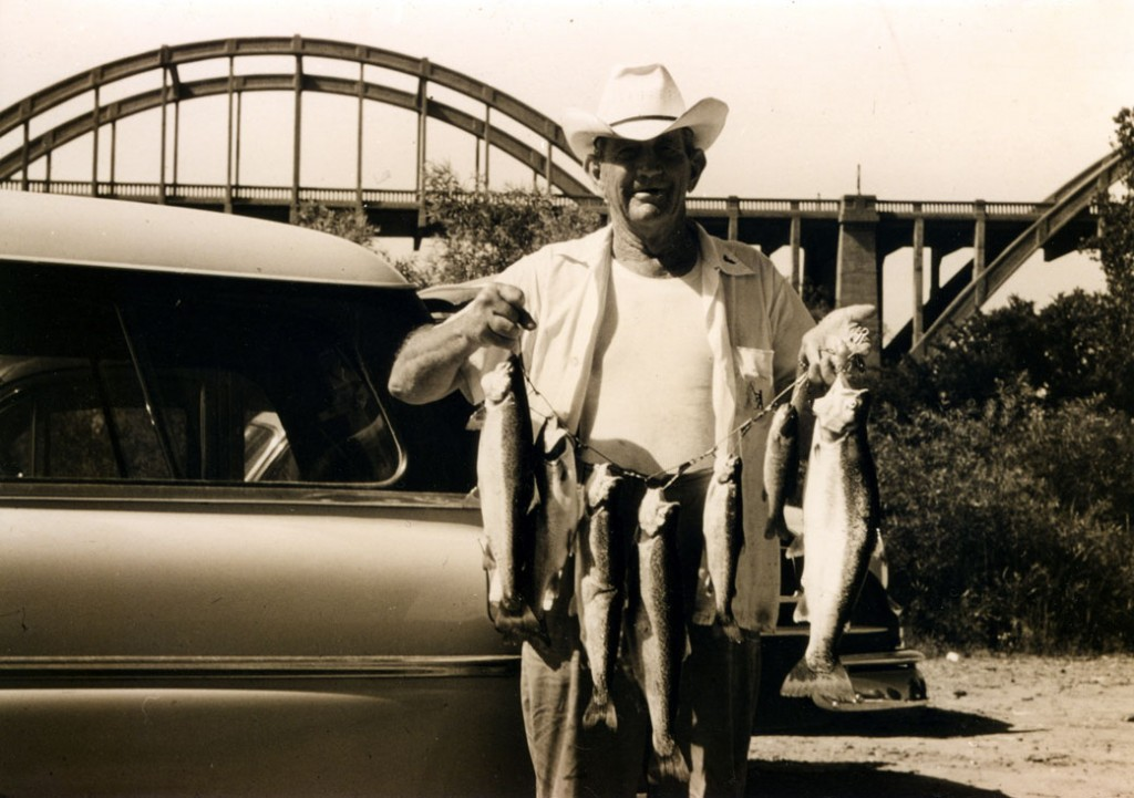 Cowboy Collie in 1955 at the Cotter Big Spring Park